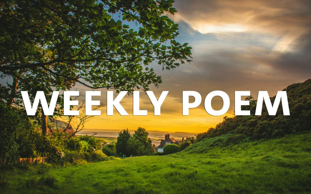 Weekly Poem: Because I could not stop for Death