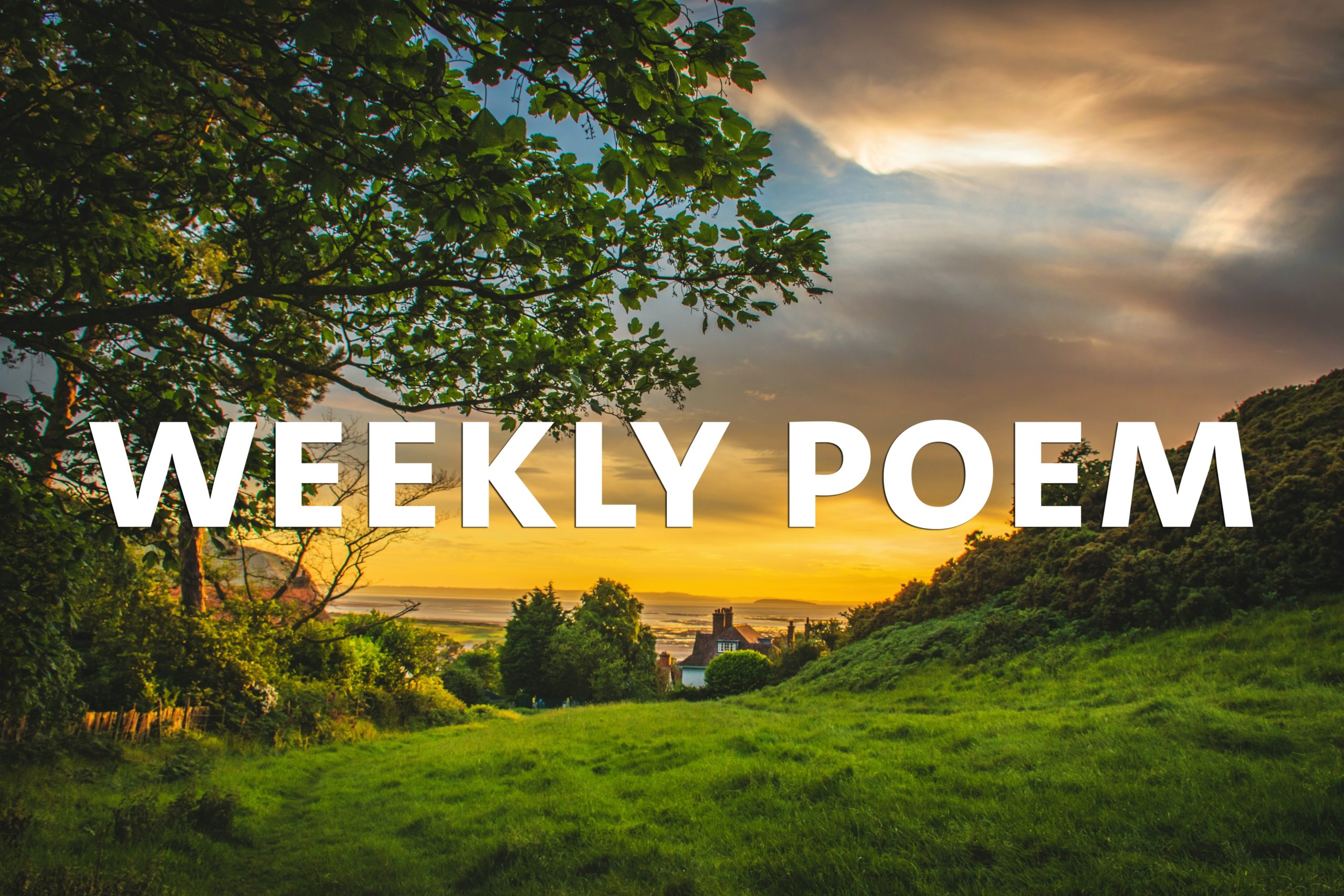 "a sunny summer evening of a hill with some houses and the ocean in the background, the words ""WEEKLY POEM"" are in the centre of the image in all caps"