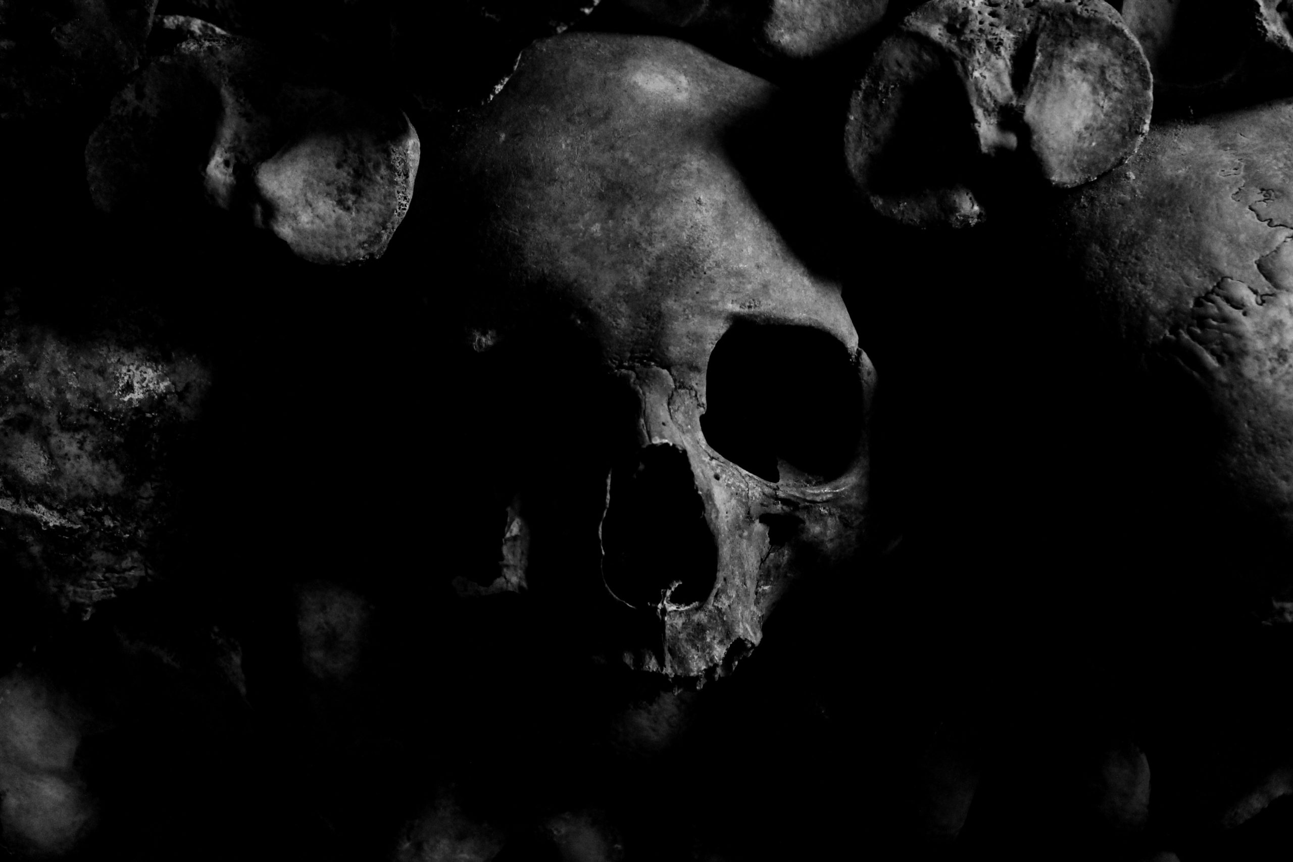 Image of a skull in the shadows