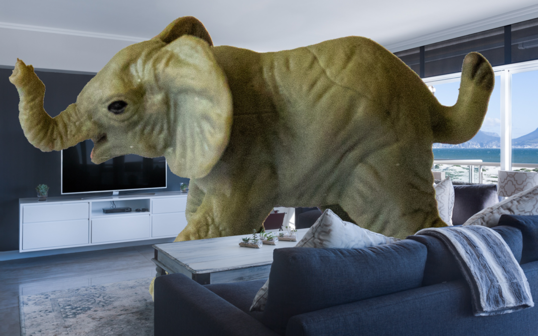 Idiom of the Week: the elephant in the room